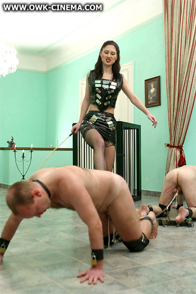 Madame Sarka's ball pulling contest