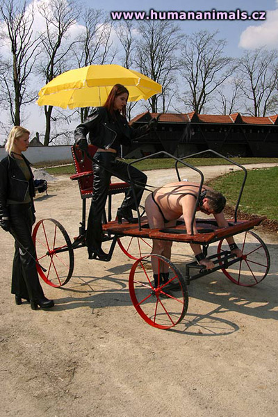 Human transport to service the pampered Ladies at OWK