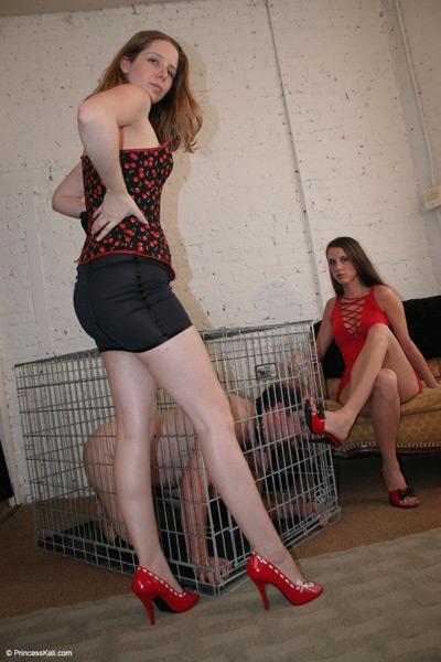 Caged slave shoe cleaner