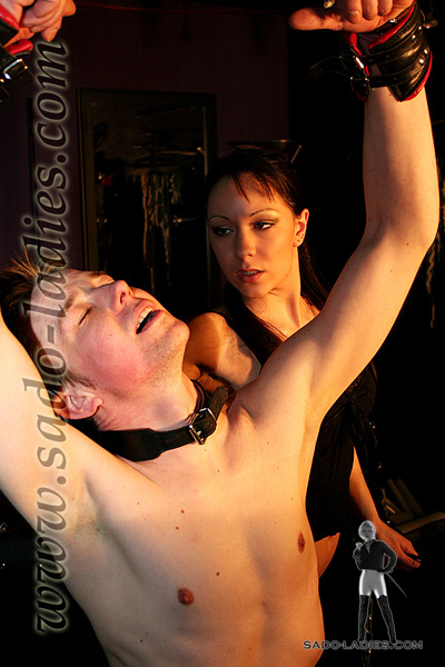 Rented slave boy gets collared up by Mistress