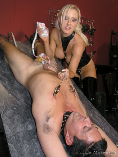 Shocking her slave's balls and pulling on his nipples