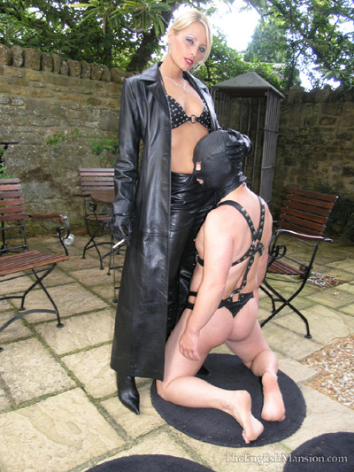 Seated dominatrix tgp
